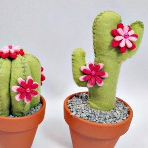 Cactus van vilt
