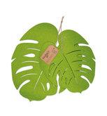 Vilt monstera bladeren groen 2 stuks per set