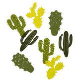 Vilt Cactussen, Lime Groen/Groen, 16 stuks per verpakking