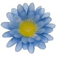 Stoffen kunst gerbera klein blauw 6,5 cm