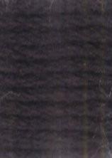 Venus borduurgaren donker blauw