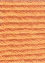 Venus borduurgaren