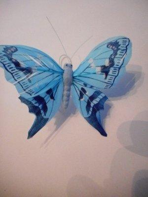 Vlinder fel blauw per stuk