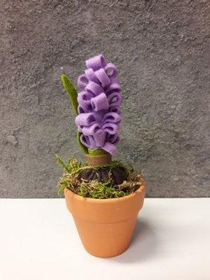 DHZ pakket hyacint in pot lila per stuk