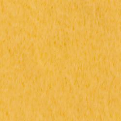 V604 Wolvilt Kuikengeel